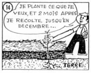 Image Le Compost13
