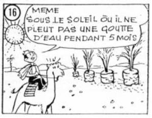 Image Le Compost14