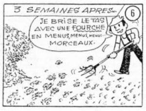 Image Le Compost5